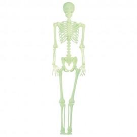 Scheleti din plastic halloween, fluorescenti - 30 cm, 98/2065, set 4 buc